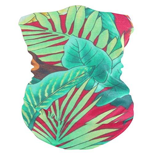 Tropic Bird LeaveHeadband Womens Bandana Mens Balaclava,Neck Warmer,Face Mask,Headwear Foulard ()
