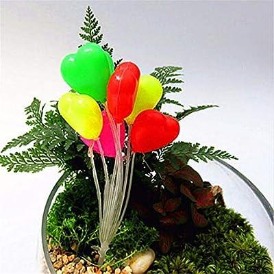 senlinlv 2Pcs Garden Ornament Miniature Romantic Colorful Balloon Plant Fairy Garden Dollhouse Home Fish Tank Accessorie Mini Plant Pot Decor Gift (Heart): Home & Kitchen