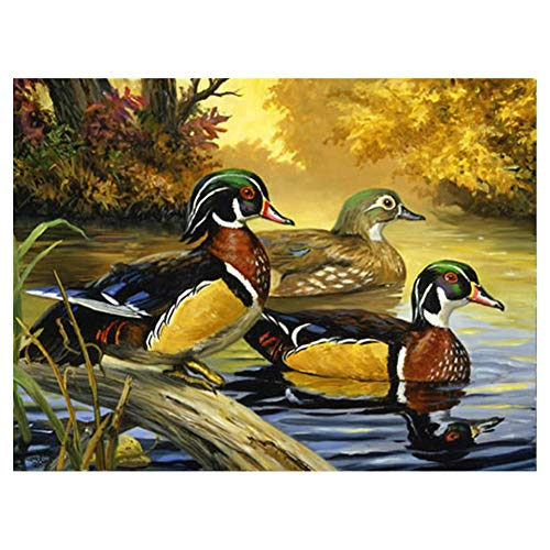 LIPHISFUN DIY 5D Diamond Painting by Number Kit for Adult, Full Round Resin Beads Drill Diamond Embroidery Dotz Kit Home Wall Decor,30x40cm,Wild Duck