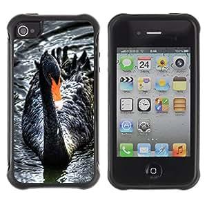 LASTONE PHONE CASE / Suave Silicona Caso Carcasa de Caucho Funda para Apple Iphone 4 / 4S / Black Swan Water Beak Cute Bird Ornithology