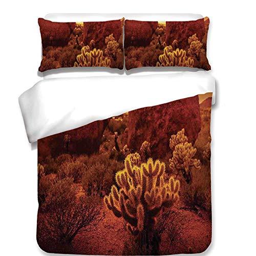 Saguaro Cactus Decor Soft 3 Piece Bedding Set,Dramatic Desert Scenery Like Burnt by Sun Near Scottsdale Hot Rocks Serene Western Image for Bedroom,Queen (Scottsdale Queen Comforter)