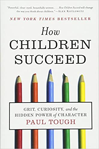 Image result for How Children Succeed tough