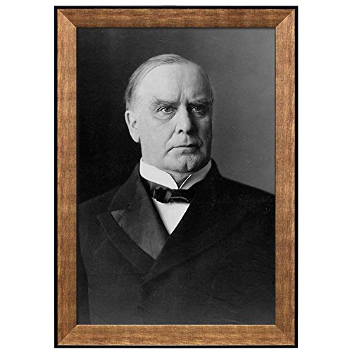 Portrait of William McKinley (25th President of the United States) American Presidents Series Framed Art Print