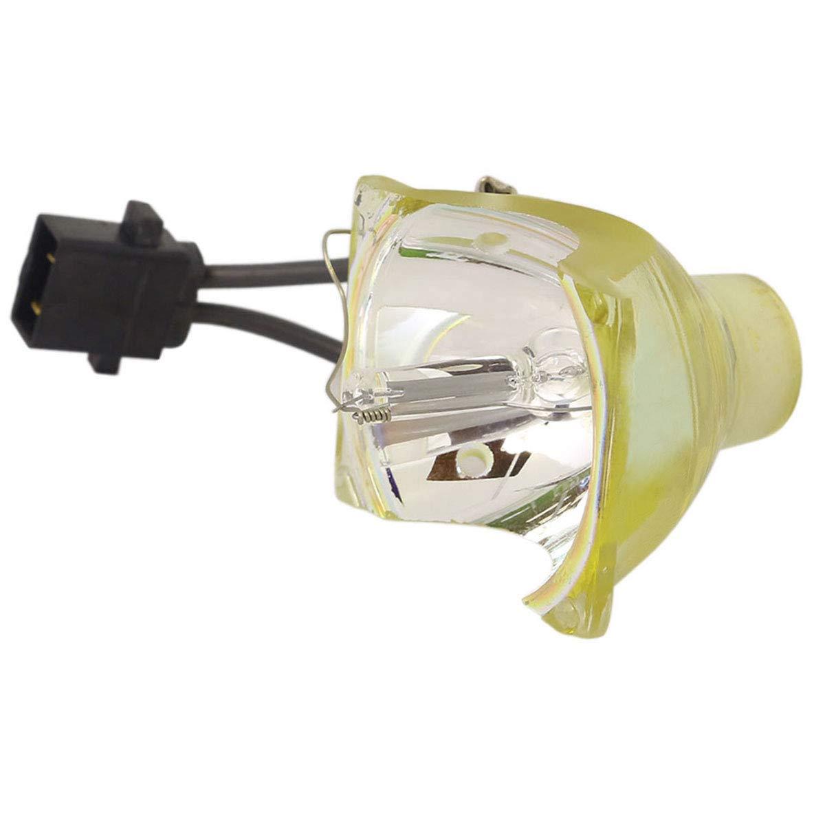 Lutema OEM プロジェクター交換用ランプ ハウジング/電球付き Epson EB 1776W用 Economy Economy Lamp Only B07KTJV42S