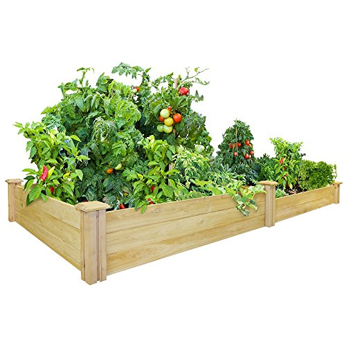 - Greenes Fence 48-Inch x 96-Inch Cedar Raised Garden Bed