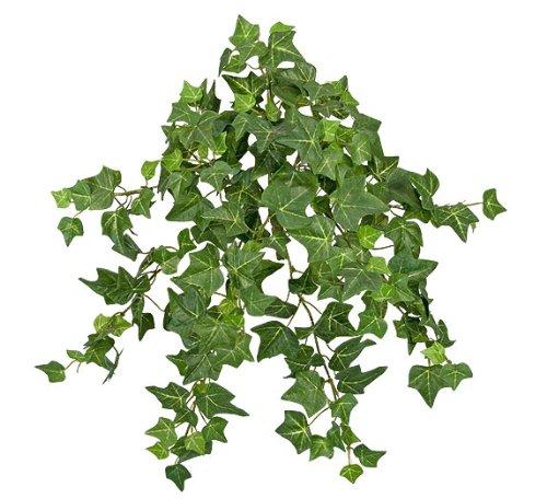 Six 15 Quot Mini English Ivy Artificial Hanging Bushes Buy