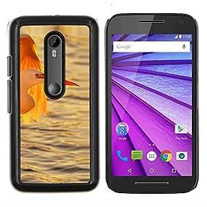 All Phone Most Case / Oferta Especial Duro Teléfono Inteligente PC Cáscara Funda Cubierta de proteccion Caso / Hard Case Motorola Moto G3 3rd Gen // Stork Ocean Sun Sunset Summer