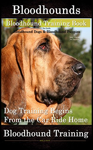 Bloodhounds, Bloodhound Training Book For both Bloodhound Dogs & Bloodhound Puppies By D!G THIS DOG Training: Dog Training Begins From the Car Ride Home Bloodhound Training