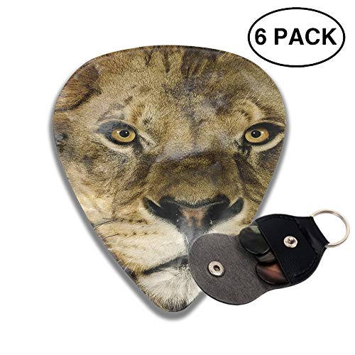 Animal Lion Cats Guitar Picks 3 D Print Custom 6-Pack 0.46mm 0.73mm And 0.96mm with a pocket