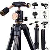 Lightweight Professional Portable Camera DSLR Tripod with 1/4 Review and Comparison