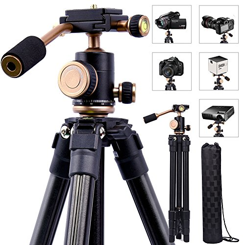 Lightweight DSLR Projector Stand,Professional Portable Camera Tripod with 1/4 Inch Screw,360°Panorama Ball Head, Quick Release Plate and Bubble Level For Canon Nikon Olympus DV camcorders Projector Section Heavy Duty Range