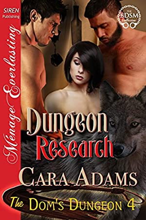 book cover of Dungeon Research