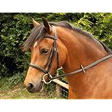 Windsor Equestrian Horses Bridle