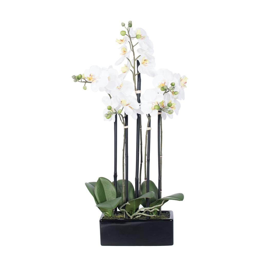 Vickerman FC170602 Purple Orchid Everyday Floral