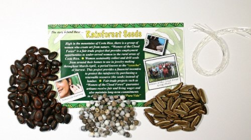 Nature-Watch Rainforest Seed Bracelet Project (Makes 25 Projects)
