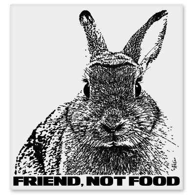 Friend Not Food Bunny Vinyl Sticker - Car Window Bumper Laptop - SELECT SIZE