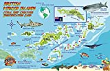 British Virgin Islands Dive Map & Coral Reef Creatures Guide Franko Maps BVI Laminated Fish Card