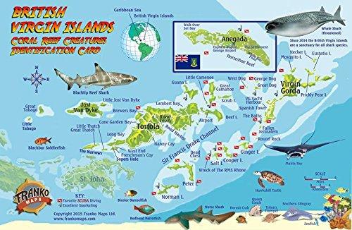 - British Virgin Islands Dive Map & Coral Reef Creatures Guide Franko Maps BVI Laminated Fish Card