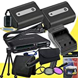 TWO NPFH50 Lithium Ion Replacement Batteries w/Charger + Mini HDMI + 3 Piece Filter Kit + USB SD Memory Card Reader /Wallet + Deluxe Starter Kit for Sony DCRDVD508, DCRDVD408, DCRDVD308, DCRDVD108, DCRDVD505, DCRDVD405, DCRDVD305, DCRDVD205, DCRDVD105, DC