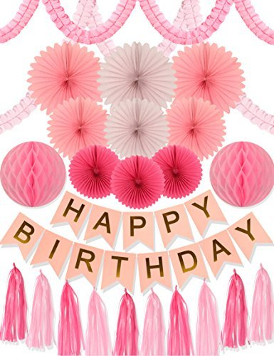 Pink Birthday Party Decoration- 24pcs Pink Party Decors and Supplies, Pink Happy Birthday Banner, Paper Tassels, Pink and Gold Letters Birthday Bunting Stylish Decorations (Pink) -