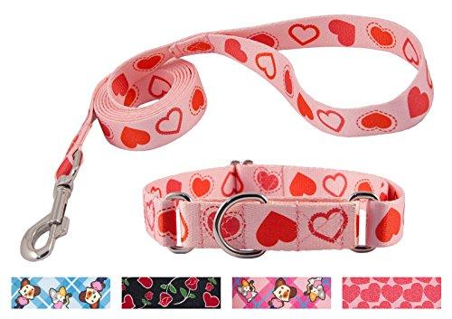 Heart Leash - Country Brook DesignHappy Hearts Martingale Dog Collar & Leash - Medium