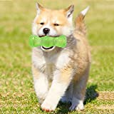 OK HITECH S size puppy chew toys teething squeaky small dog puppy chew toys chew bones indestructible Molars stick safe TPR material