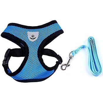 Meeyou Little Pet Adjustable Mesh Harness with leash(M,Blue)