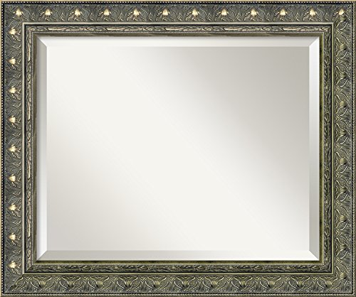 Framed Mirrors for Wall | Barcelona Champagne Mirror for Wall | Solid Wood Wall Mirrors | Small Wall Mirror 20.38 x 24.38