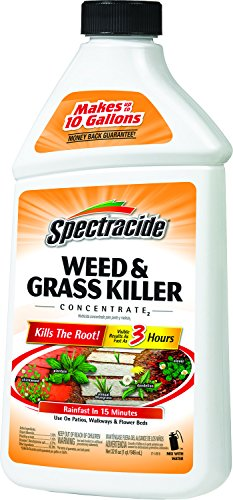 Spectracide 96009 Killer Concentrate 32 Ounce product image