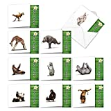 10 Humorous 'Zoo Yoga All-Occasion Assortment' Note Cards w/Envelopes (4.8 x 6.6 Inch) - Blank Greeting Notecards with Funny Zen Bear, Lion, Monkey - Boxed Circus Animal Stationery ACQ6547OCB-B1x10