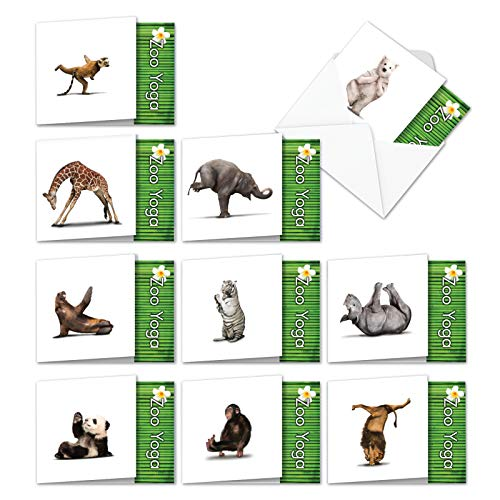10 Humorous 'Zoo Yoga All-Occasion Assortment' Note Cards w/Envelopes (4.8 x 6.6 Inch) - Blank Greeting Notecards with Funny Zen Bear, Lion, Monkey - Boxed Circus Animal Stationery ()