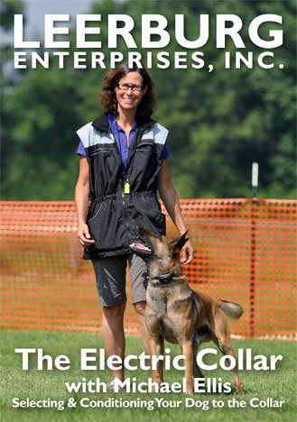 The Electric Collar with Michael Ellis