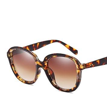 Aoligei Europa y los Estados Unidos tendencia gafas de sol elípticos marco gafas de sol masculinas y femeninas doble medidor del clavo: Amazon.es: Jardín