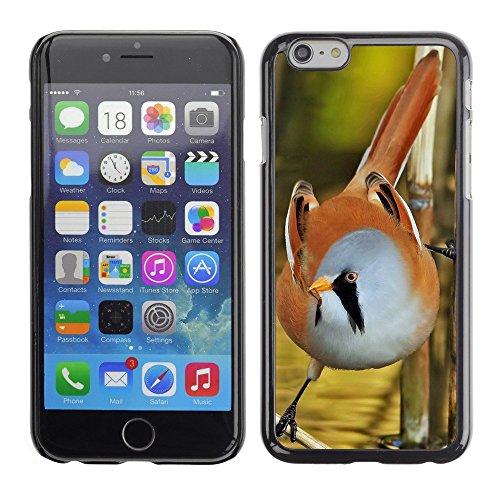 "Hülle Case Schutzhülle Cover Premium Case // F00002661 Tiefenschärfe // Apple iPhone 6 6S 6G PLUS 5.5"""