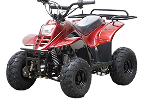 "DONGFANG 110cc ATV Fully Automatic Four Wheelers 4 Stroke Engine 6"" Tires Quads for Kids Burgundy"