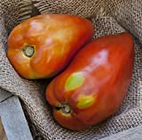 San Marzano Redorta Heirloom Tomato Premium Seed