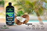 PURE C8 MCT OIL by TERRAFORMULATIONS, 100% Caprylic Acid, Fuel Your Mind & Boost Energy, 3X The Performance of Standard MCT Oils, Keto & Paleo Diet Recommended, 32 Oz Bottle