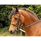 Windsor Equestrian Bridle With Plain Cavesson Noseband Black Full
