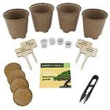 Bonsai Starter Kit - The Complete Growing Kit to