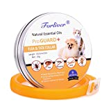 Dog Flea Treatment Collar - Cat/Dog Flea and Tick Collar - Pet Essential Oil Pest Control Collars Prevention for Cats Dogs - 8 Months Protection - Hypoallergenic, Adjustable & Waterproof - Flea Treatment Tick Prevention
