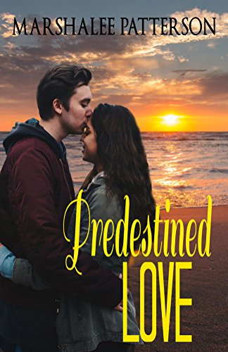 Predestined Love: An Inspirational Christian Novel
