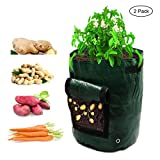 buy Amerzam 2-Pack 7 Gallon Garden Potato Grow Bag Vegetables Planter Bags with Handles and Access Flap for Grow Vegetables: Potato, Carrot & Onion now, new 2019-2018 bestseller, review and Photo, best price $19.99