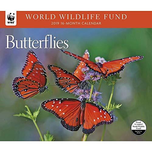 Butterfly Calendar - 2019 Butterflies WWF Wall Calendar, by Calendar Ink