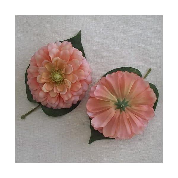 3.75″ Pink Orange Variegated Zinnia Flower Head (4)