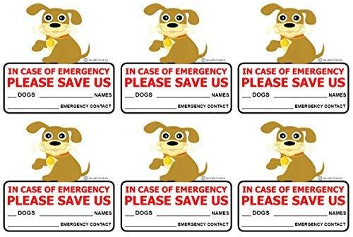 SecurePro Products 6 Pegatinas para Puerta de Rescate de Perro o Mascota, tamaño 10 x 10 cm, en Caso de Fuego o de...