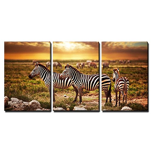 wall26 - 3 Piece Canvas Wall Art - Zebras Herd on Savanna at Sunset, Africa. Safari in Serengeti, Tanzania - Modern Home Decor Stretched and Framed Ready to Hang - 16