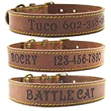 Leather Dog Collar - Shorven Custom Engraved Genuine Leather Dog Collar with Any Text L Brown