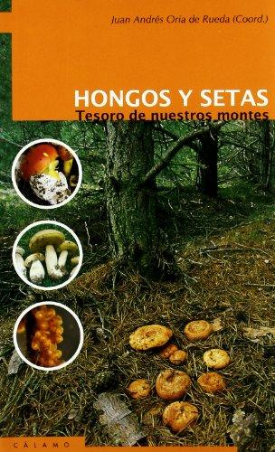 Descargar Libro Hongos Y Setas De Juan Andrés Oria Juan Andrés Oria De Rueda