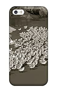 New Iphone 5/5s Case Cover Casing(bird Invasion Beach Animal Bird)