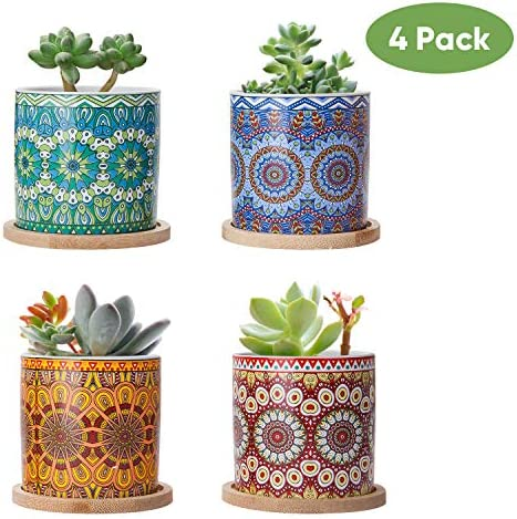 Brajttt Succulent Plant Pots-3Inch Cylindrical Ceramic Planter for Cactus,Succulent Planting,with Bamboo Trays,Pack of 4